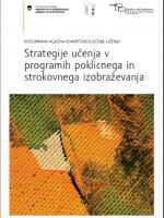 Strategije učenja v programih poklicnega in strokovnega izobraževanja