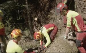 Ugotavljanje predznanja, povezovanje, sodelovanje - Srednja gozdarska in lesarska šola – podnapisi v angleškem jeziku