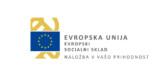 Logotip EU - Evropski socialni sklad
